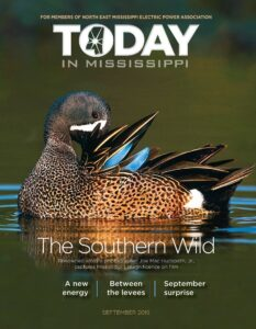 Today in Mississippi September 2019 issue cover. The Southern Wild. Duck in water.